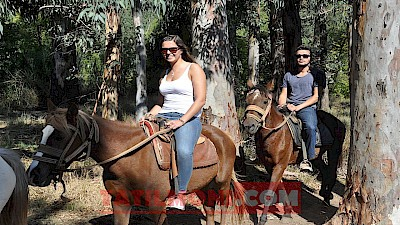 Marmaris at safari, safari turu Marmaris Marmaris safari turları, Marmaris at turu